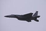 Mr.boneさんが、嘉手納飛行場で撮影したアメリカ空軍 F-15D-35-MC Eagleの航空フォト(飛行機 写真・画像)