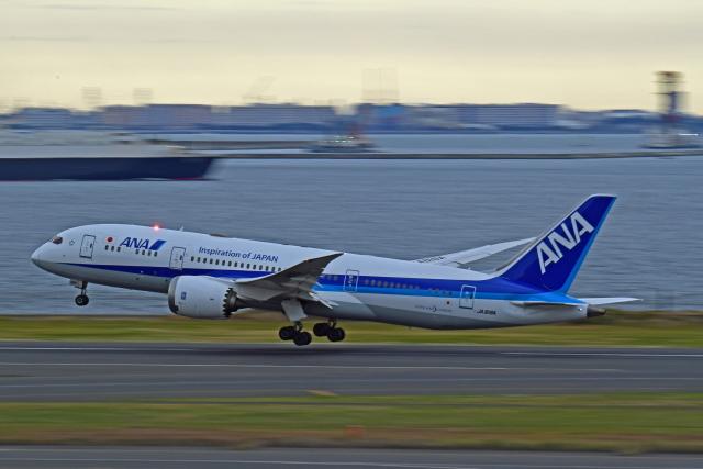 Souma2005さんが、羽田空港で撮影した全日空 787-8 Dreamlinerの航空フォト(飛行機 写真・画像)