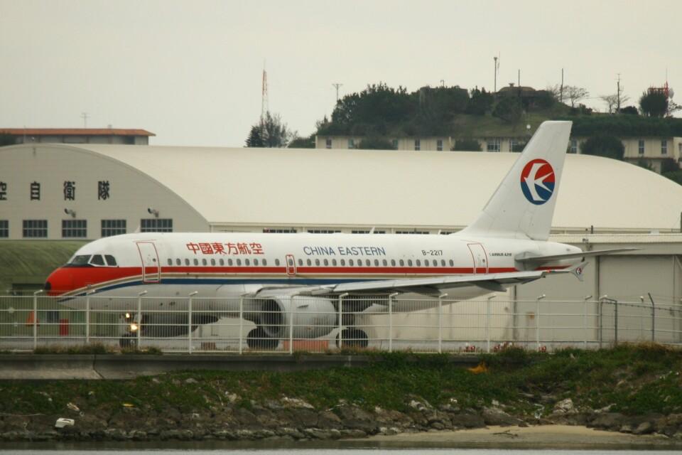 Mr.boneさんの中国東方航空 Airbus A319 (B-2217) 航空フォト