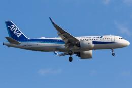 walker2000さんが、羽田空港で撮影した全日空 A320-271Nの航空フォト(飛行機 写真・画像)