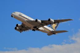 TAKAHIDEさんが、成田国際空港で撮影したシンガポール航空 A380-841の航空フォト(飛行機 写真・画像)