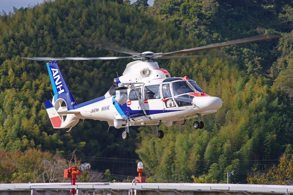 apphgさんのオールニッポンヘリコプター Airbus Helicopters AS365/565 (JA67NH) 航空フォト