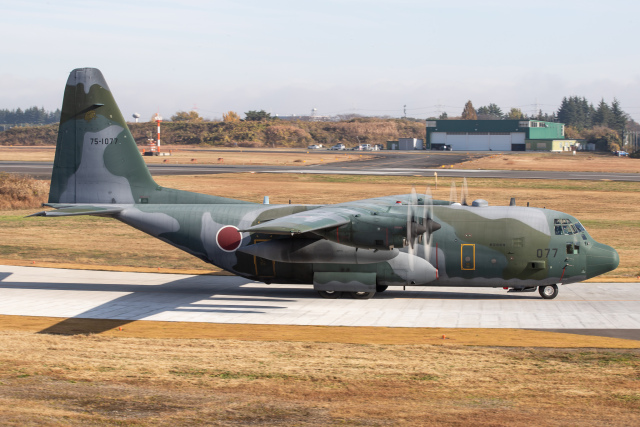 KANTO61さんが、入間飛行場で撮影した航空自衛隊 C-130H Herculesの航空フォト(飛行機 写真・画像)