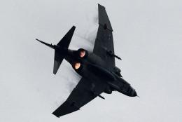 kaeru6006さんが、茨城空港で撮影した航空自衛隊 RF-4E Phantom IIの航空フォト(飛行機 写真・画像)
