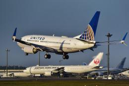 パンダさんが、成田国際空港で撮影したユナイテッド航空 737-724の航空フォト(飛行機 写真・画像)