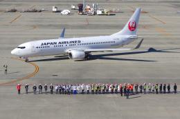 航空フォト:JA312J 日本航空 737-800