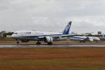 @たかひろさんが、伊丹空港で撮影した全日空 787-8 Dreamlinerの航空フォト(飛行機 写真・画像)