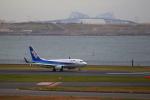 乙事さんが、羽田空港で撮影した全日空 737-781の航空フォト(飛行機 写真・画像)