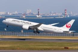 walker2000さんが、羽田空港で撮影した日本航空 787-9の航空フォト(飛行機 写真・画像)