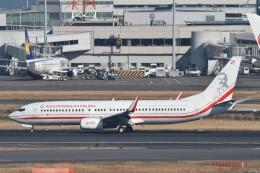 B747‐400さんが、羽田空港で撮影したポーランド政府 737-86Xの航空フォト(飛行機 写真・画像)