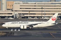 B747‐400さんが、羽田空港で撮影した日本航空 787-8 Dreamlinerの航空フォト(飛行機 写真・画像)