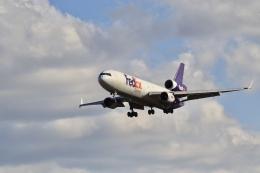 mahiちゃんさんが、成田国際空港で撮影したフェデックス・エクスプレス MD-11Fの航空フォト(飛行機 写真・画像)
