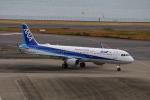 乙事さんが、羽田空港で撮影した全日空 A321-211の航空フォト(飛行機 写真・画像)
