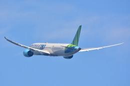 サンドバンクさんが、成田国際空港で撮影したバンブー・エアウェイズ 787-9の航空フォト(飛行機 写真・画像)