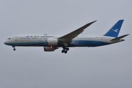 Izumixさんが、成田国際空港で撮影した厦門航空 787-9の航空フォト(飛行機 写真・画像)