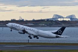 ひこ☆さんが、羽田空港で撮影したルフトハンザドイツ航空 A340-313Xの航空フォト(飛行機 写真・画像)