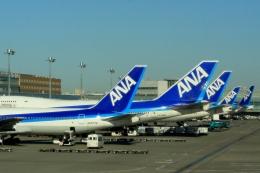 Hiro-hiroさんが、羽田空港で撮影した全日空 747-481(D)の航空フォト(飛行機 写真・画像)