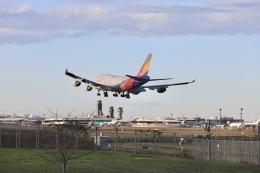 mahiちゃんさんが、成田国際空港で撮影したアシアナ航空 747-48EM(BDSF)の航空フォト(飛行機 写真・画像)