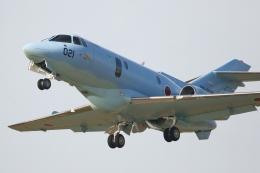 swamp foxさんが、茨城空港で撮影した航空自衛隊 U-125A(Hawker 800)の航空フォト(飛行機 写真・画像)