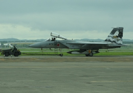 tetuさんが、千歳基地で撮影した航空自衛隊 F-15J Eagleの航空フォト(飛行機 写真・画像)