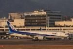 Hiro-hiroさんが、伊丹空港で撮影した全日空 777-281/ERの航空フォト(飛行機 写真・画像)
