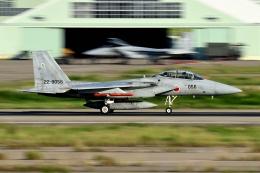 960さんが、小松空港で撮影した航空自衛隊 F-15DJ Eagleの航空フォト(飛行機 写真・画像)