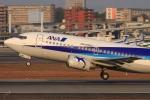 Hiro-hiroさんが、伊丹空港で撮影した全日空 737-54Kの航空フォト(飛行機 写真・画像)