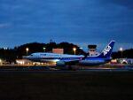 ナナオさんが、石見空港で撮影した全日空 737-881の航空フォト(飛行機 写真・画像)