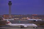 シグナス021さんが、羽田空港で撮影した日本航空 787-9の航空フォト(飛行機 写真・画像)