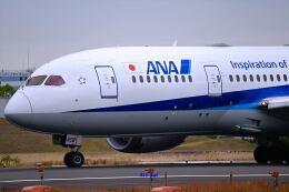 キットカットさんが、伊丹空港で撮影した全日空 787-8 Dreamlinerの航空フォト(飛行機 写真・画像)