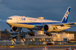 Foxfireさんが、成田国際空港で撮影した全日空 777-381/ERの航空フォト(飛行機 写真・画像)