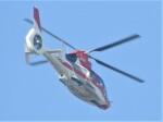 いねねさんが、名古屋飛行場で撮影した中日本航空 AS365/565の航空フォト(飛行機 写真・画像)