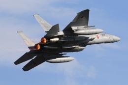 F-4さんが、入間飛行場で撮影した航空自衛隊 F-15J Eagleの航空フォト(飛行機 写真・画像)