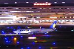 シグナス021さんが、羽田空港で撮影したスカイマーク 737-86Nの航空フォト(飛行機 写真・画像)