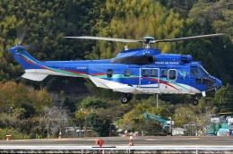 ブルーさんさんが、静岡ヘリポートで撮影した東北エアサービス AS332L1の航空フォト(飛行機 写真・画像)