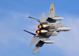 tuckerさんが、入間飛行場で撮影した航空自衛隊 F-15J Eagleの航空フォト(飛行機 写真・画像)