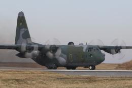Sharp Fukudaさんが、入間飛行場で撮影した航空自衛隊 C-130H Herculesの航空フォト(飛行機 写真・画像)