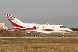 Sharp Fukudaさんが、入間飛行場で撮影した航空自衛隊 U-125 (BAe-125-800FI)の航空フォト(飛行機 写真・画像)