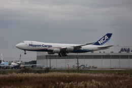 airdrugさんが、成田国際空港で撮影した日本貨物航空 747-8KZF/SCDの航空フォト(飛行機 写真・画像)