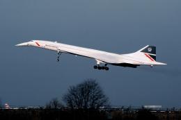 wetwingさんが、ジョン・F・ケネディ国際空港で撮影したブリティッシュ・エアウェイズ Concorde 102の航空フォト(飛行機 写真・画像)