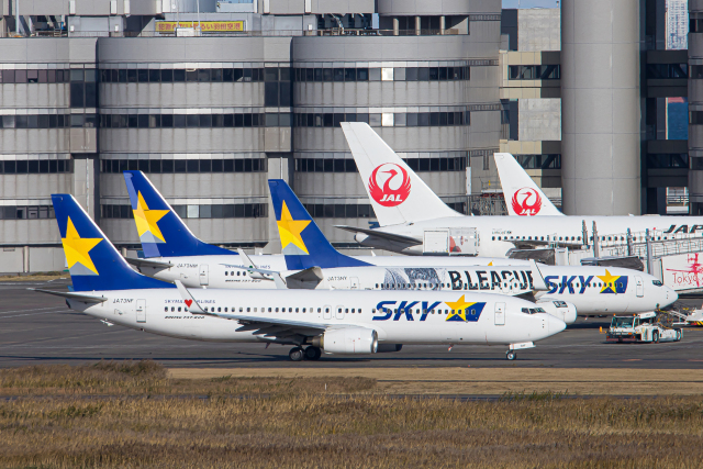 SGR RT 改さんが、羽田空港で撮影したスカイマーク 737-86Nの航空フォト(飛行機 写真・画像)