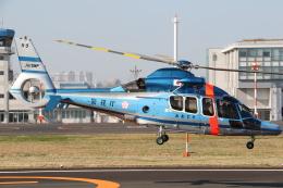 ゴンタさんが、東京ヘリポートで撮影した警視庁 EC155B1の航空フォト(飛行機 写真・画像)