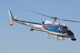 ゴンタさんが、東京ヘリポートで撮影したアカギヘリコプター AS350B1 Ecureuilの航空フォト(飛行機 写真・画像)