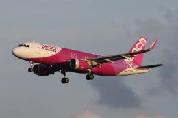 ゴンタさんが、成田国際空港で撮影したピーチ A320-214の航空フォト(飛行機 写真・画像)