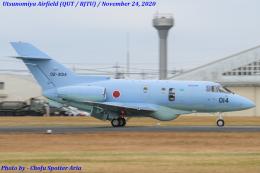 Chofu Spotter Ariaさんが、宇都宮飛行場で撮影した航空自衛隊 U-125A(Hawker 800)の航空フォト(飛行機 写真・画像)