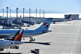 MSN/PFさんが、中部国際空港で撮影した大韓航空 A330-323Xの航空フォト(飛行機 写真・画像)