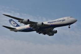 qooさんが、成田国際空港で撮影した日本貨物航空 747-8KZF/SCDの航空フォト(飛行機 写真・画像)
