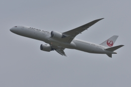 qooさんが、成田国際空港で撮影した日本航空 787-9の航空フォト(飛行機 写真・画像)