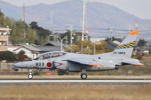 Hii82さんが、名古屋飛行場で撮影した航空自衛隊 T-4の航空フォト(飛行機 写真・画像)