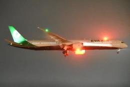 木人さんが、成田国際空港で撮影したエバー航空 787-10の航空フォト(飛行機 写真・画像)